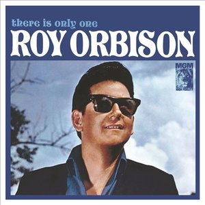ROY ORBISON - THERE IS ONLY ONE (LP)