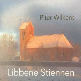 Piter Wilkens - Libbene Stiennen (CD)